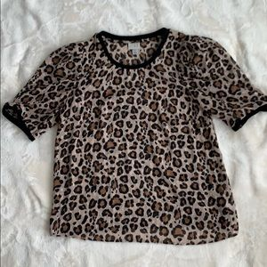 EUC A New Day Sheer Leopard Top